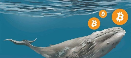 """Tug-of-war on the decline: """"whales"""" sell bitcoin, investors hold"""